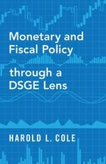 Monetary and Fiscal Policy through a DSGE Lens